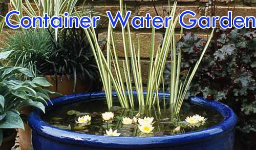 Container water garden pots container water gardens gardens and container water garden pots workwithnaturefo