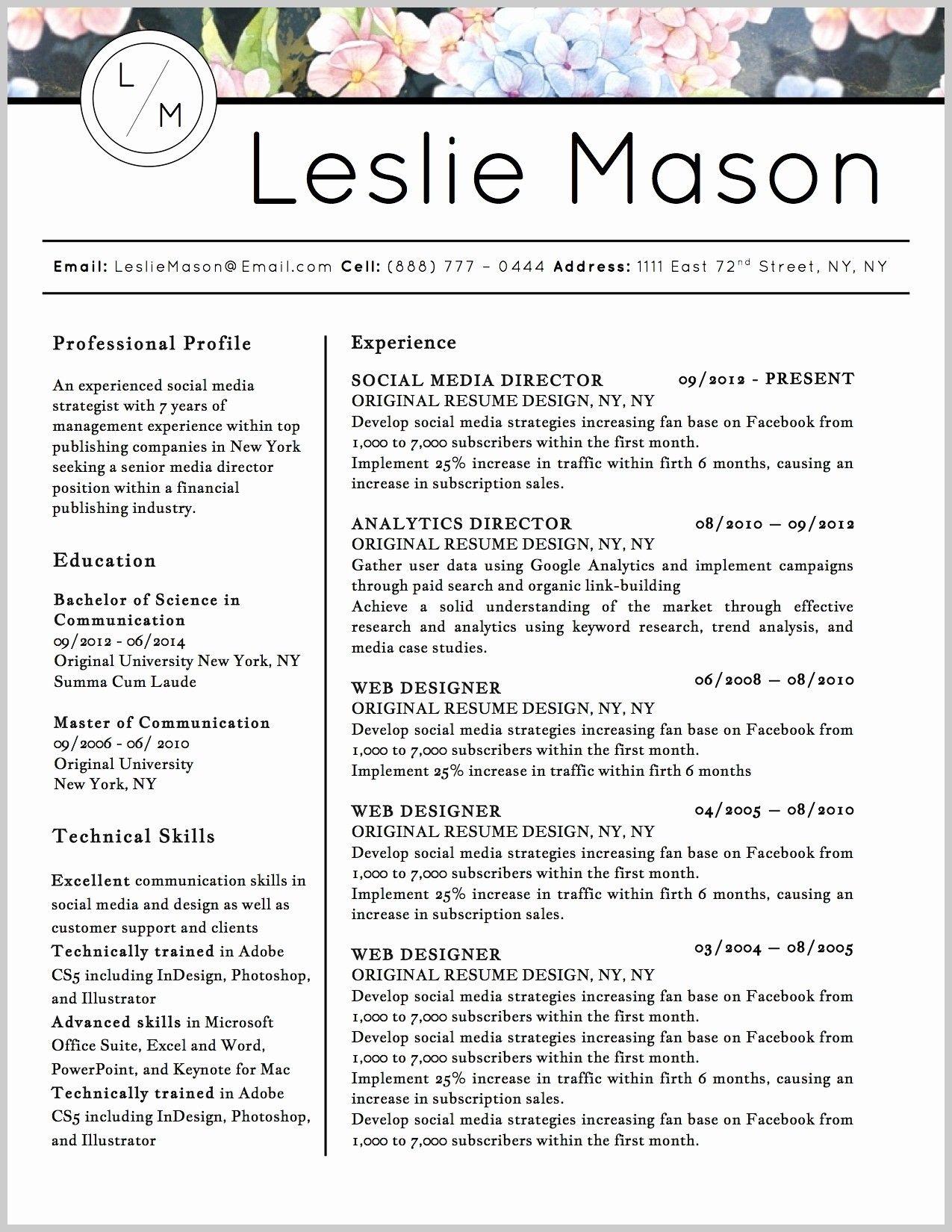 Resume Templates Paid Resume Templates Downloadable Resume Template Best Resume Template