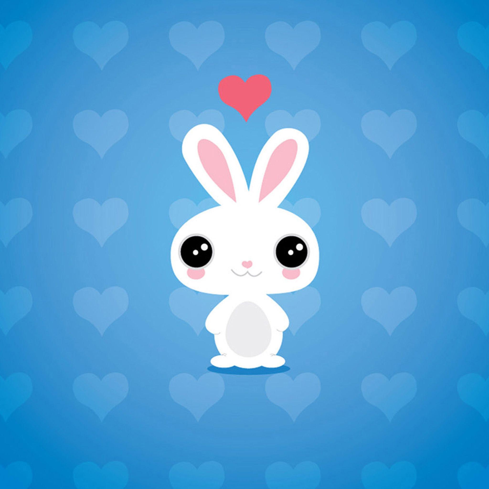 Cute Cartoon Rabbit Ipad Air 2 Wallpapers Jpg 2048 2048 Iphone Wallpaper Girly Bunny Wallpaper Cute Cartoon Wallpapers