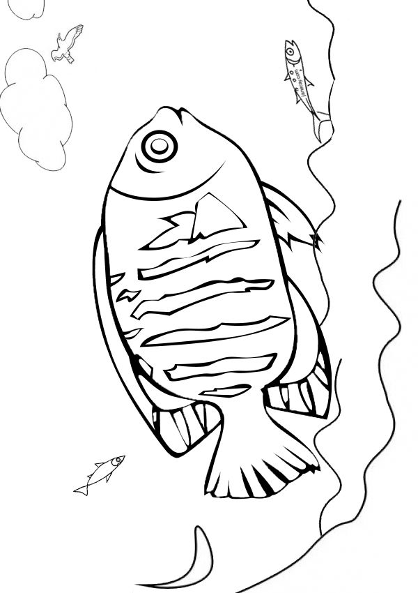 Free Online Printable Kids Colouring Pages - Flounder Fish ...