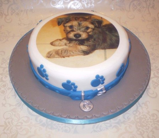 Groom S Cake Idea But With Our Dog Wearing His Team S Colors