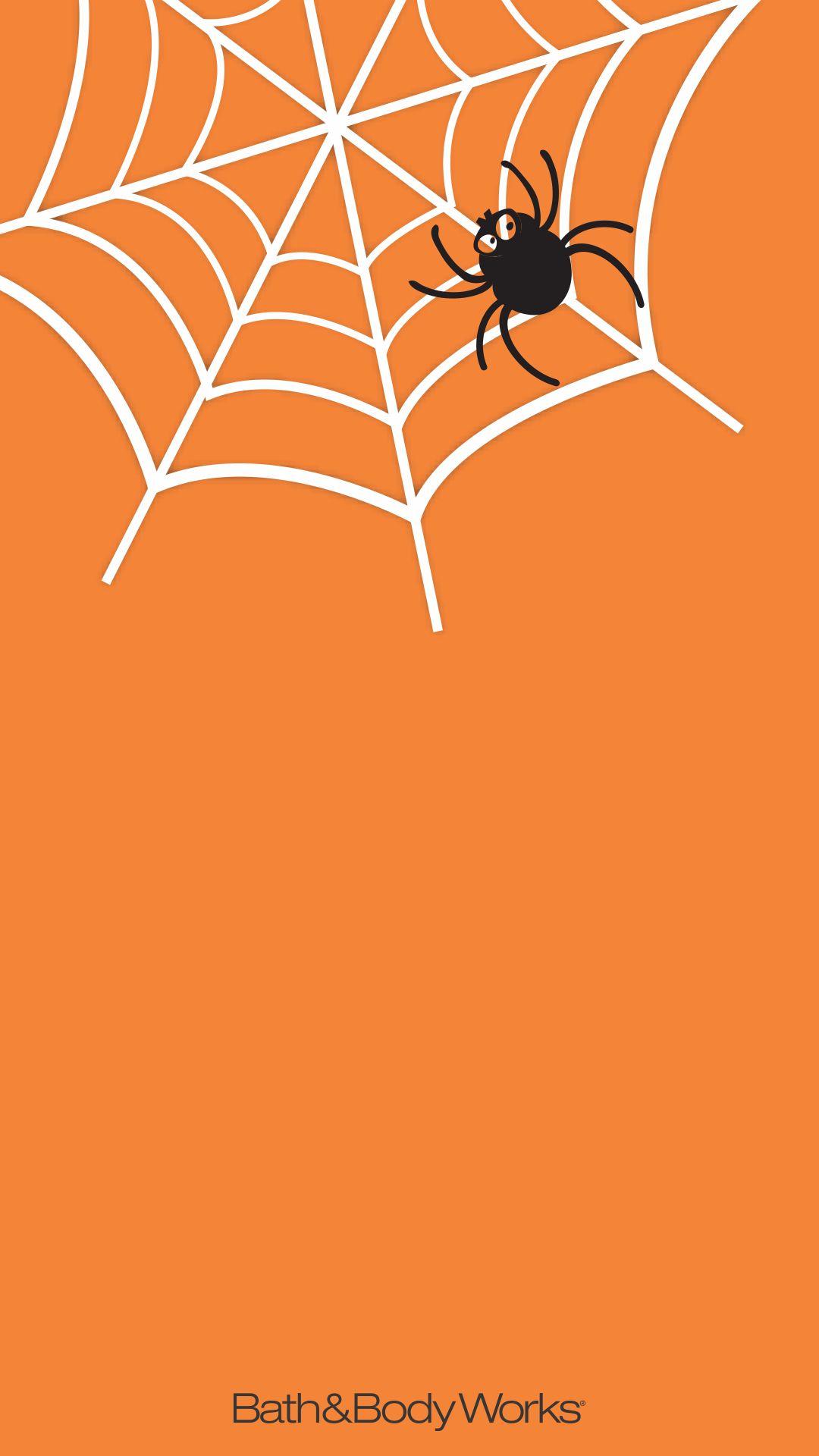 Download Wallpaper Halloween Spider - 6b12a316290565aa184dd86883d6cb1e  HD_55312.jpg