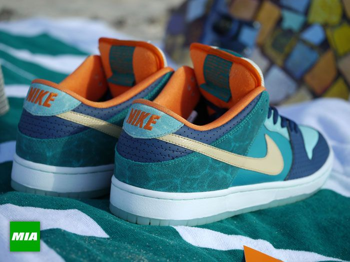nike sb dunks skate shop