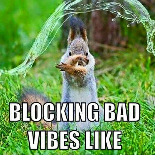 Blocking Bad Vibes Funny Pinterest