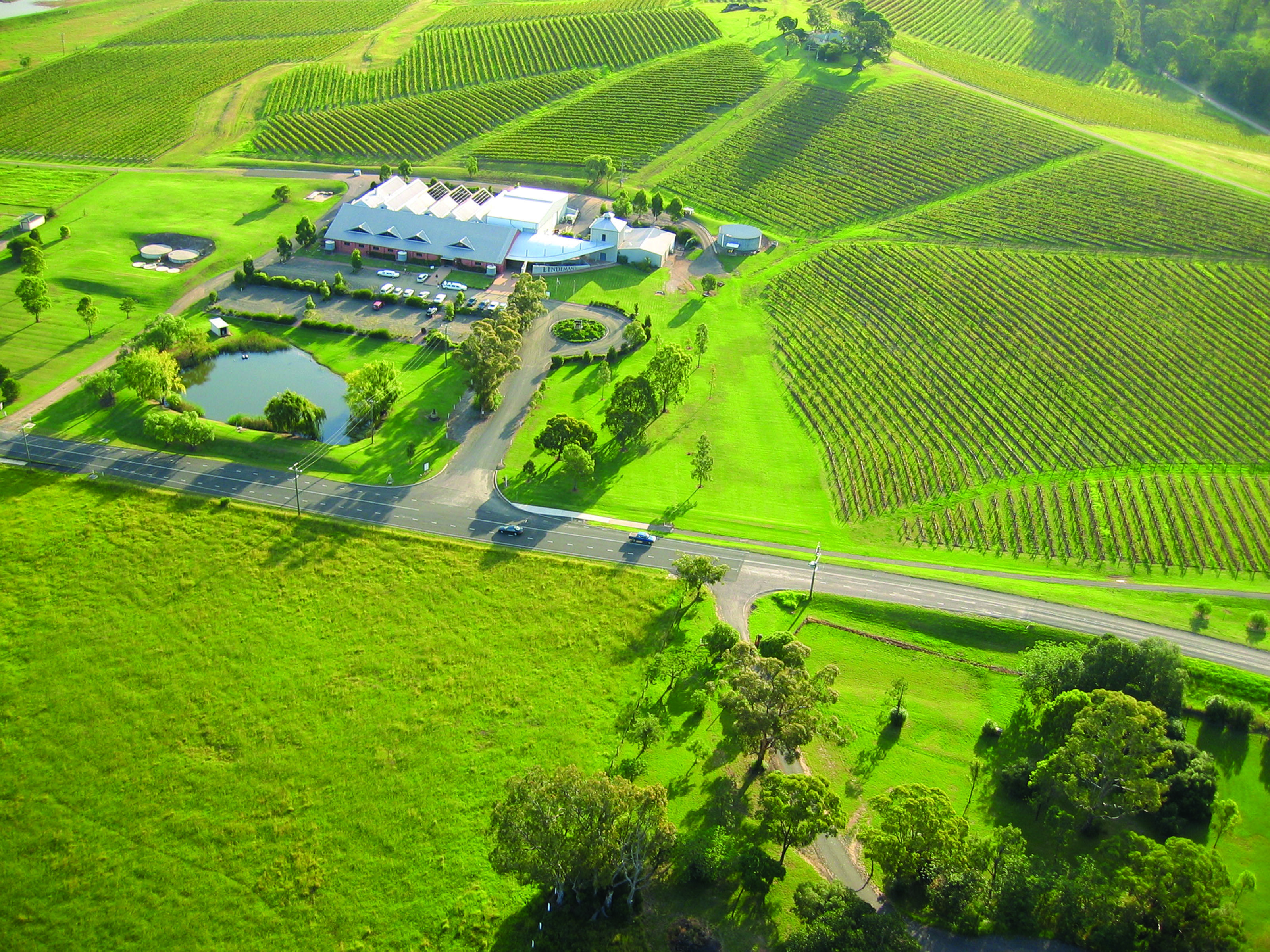 Coonawarra is a place where grapes grow for Lindeman's Coonawarra Trio.