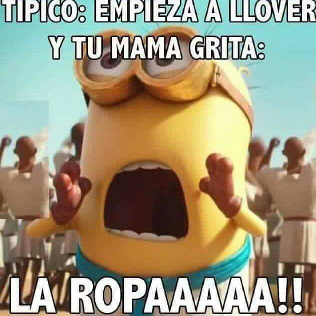 Humor Memes Funny Memes Spanish Memes