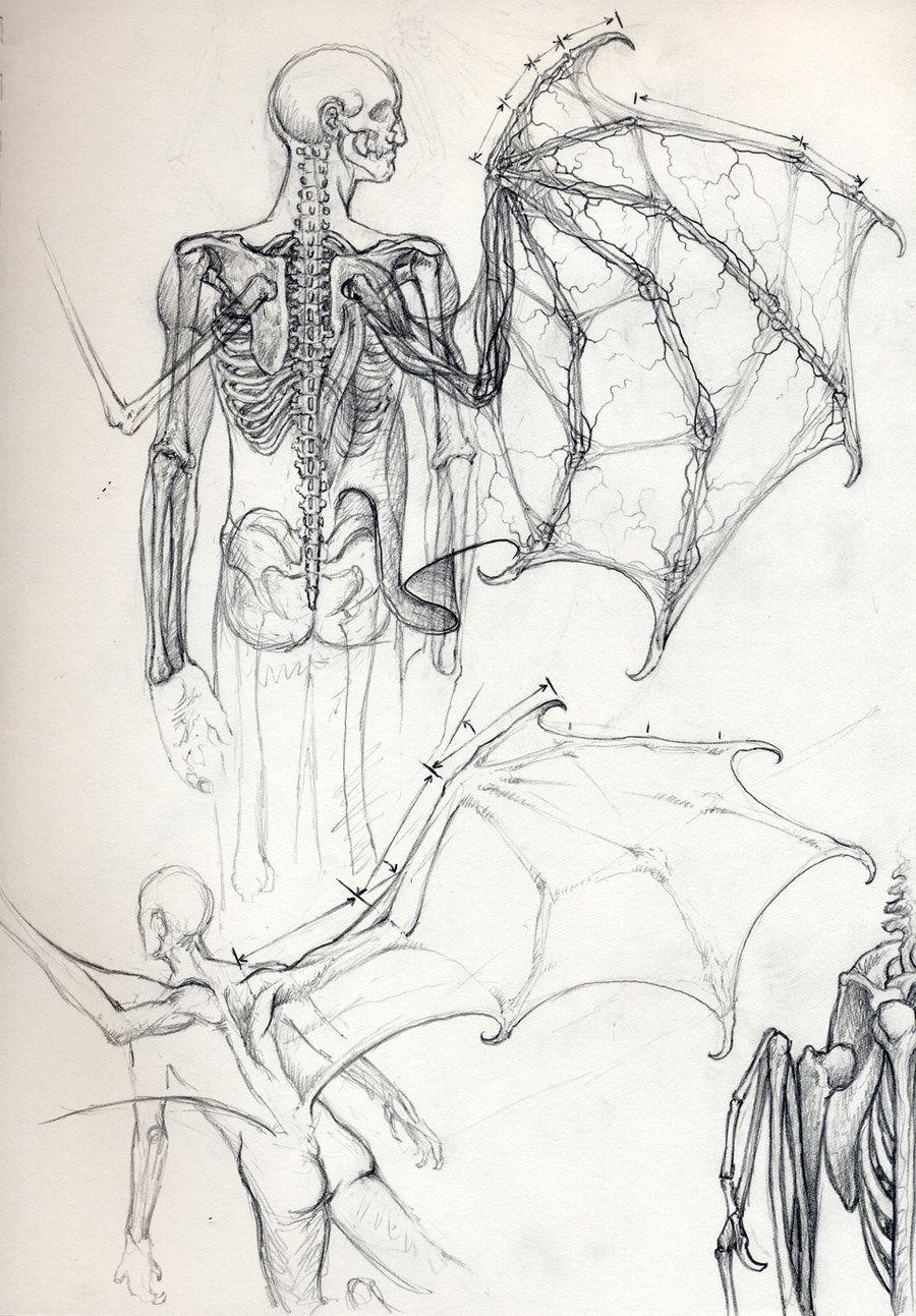 Vampire Anatomy 2 by *DanielGovar on deviantART | Halloween ...
