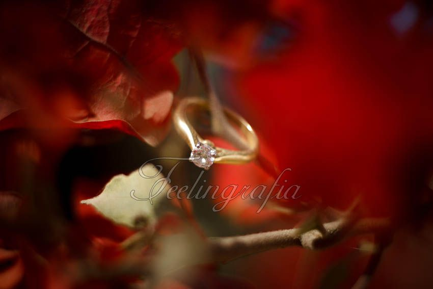 Anillo de compromiso #feelingrafia #weddings #photography
