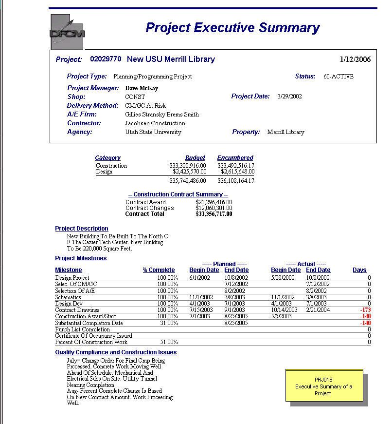 Project Executive Summary project plan Pinterest Template - project executive summary template