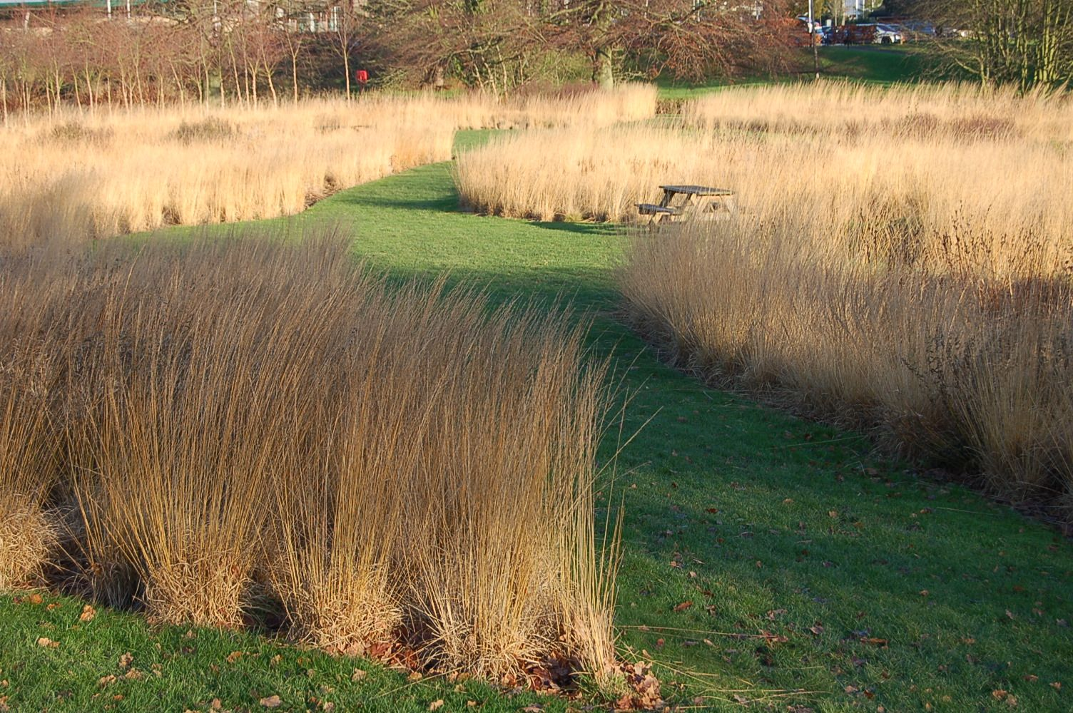The gardens of piet oudolf grasses and rivers for Piet oudolf landscape architect