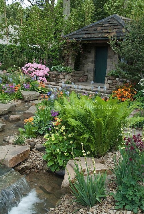 beautiful spring garden with ferns  house  waterfall  stream water feature  trees  rocks  azalea