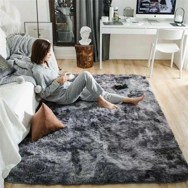 Plush Soft Carpet Area Rug Non Slip My Dream Dorm Living Room