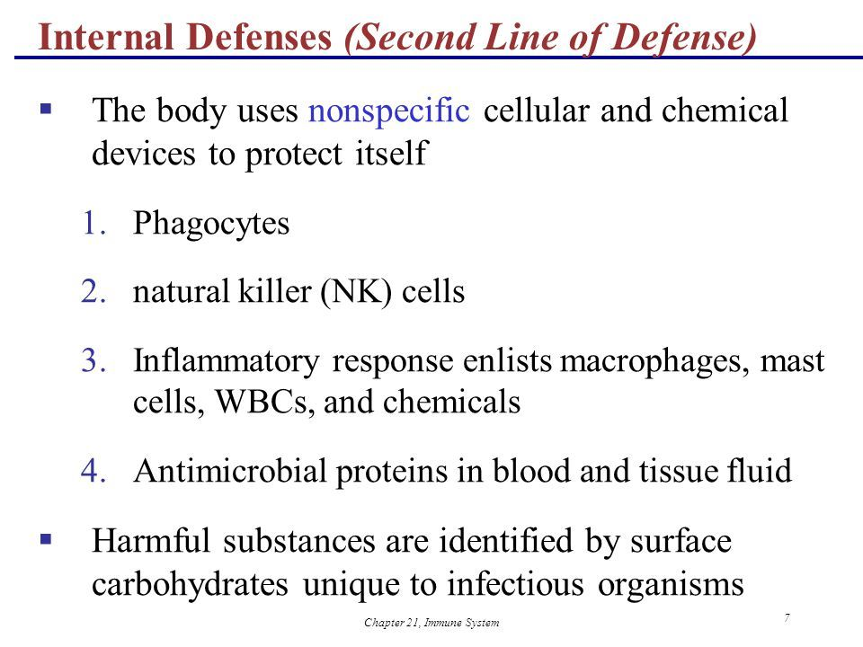 Chapter 21, Immune System 1 21 The Immune System: Innate and ...