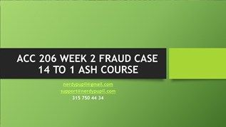 ACC 206 WEEK 2 FRAUD CASE 14 TO 1 ASH COURSE