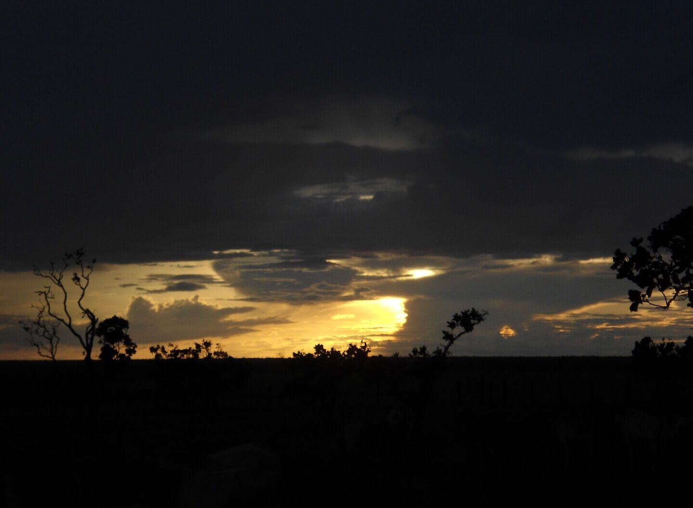 Sunset in the Rupununi, Guyana by Anna M #Guyana #Rupununi