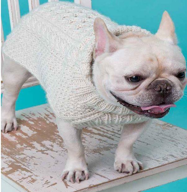 Suéter de Tricô Para Cachorro porque eles merecem toda nossa atenção ...