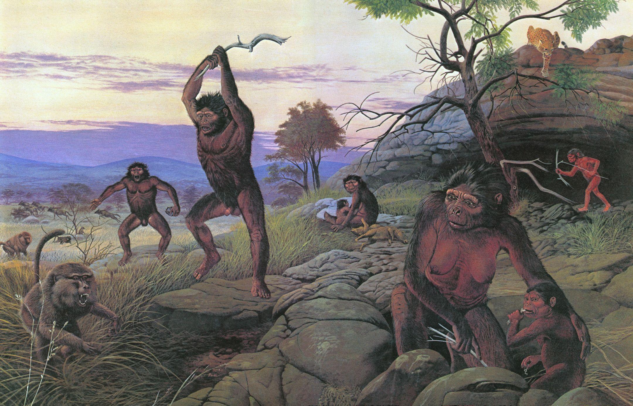 древние предки человека картинки этом