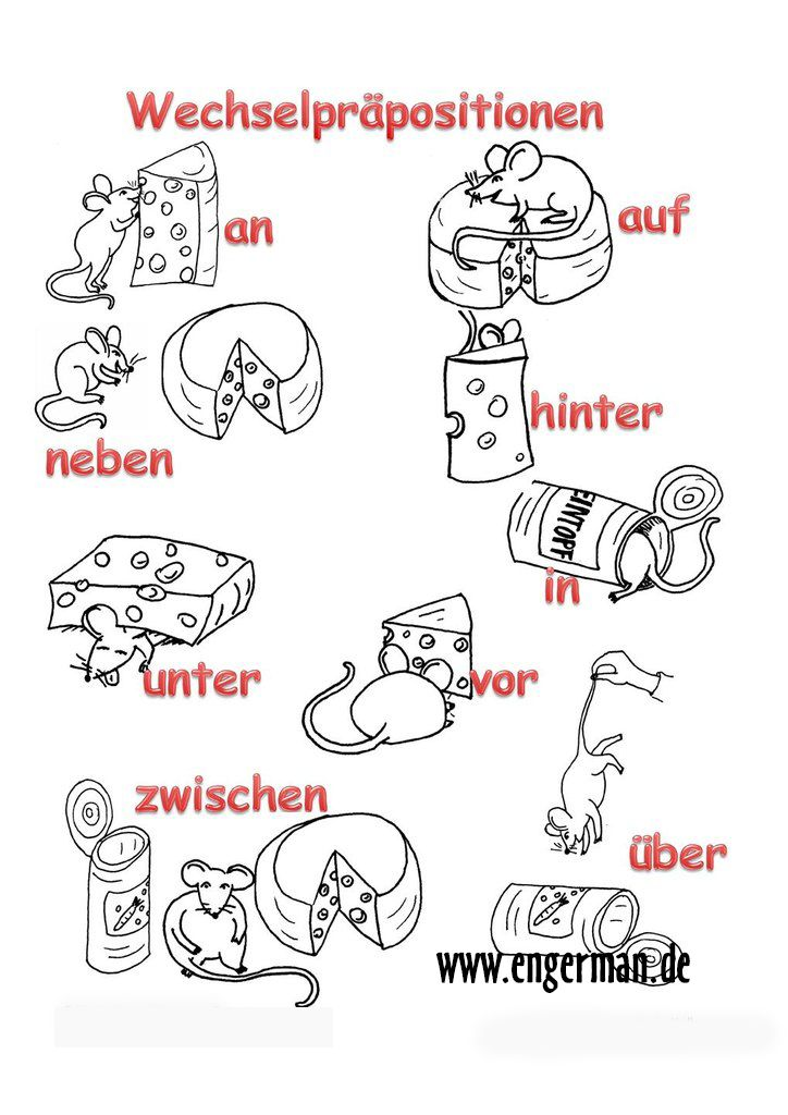 www.engerman.de | German Vocabulary Trainer | Learn german ...