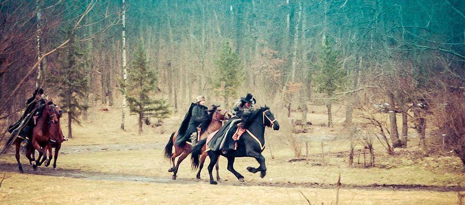 Taitavat hevoset loistavat tähtinäyttelijöiden rinnalla