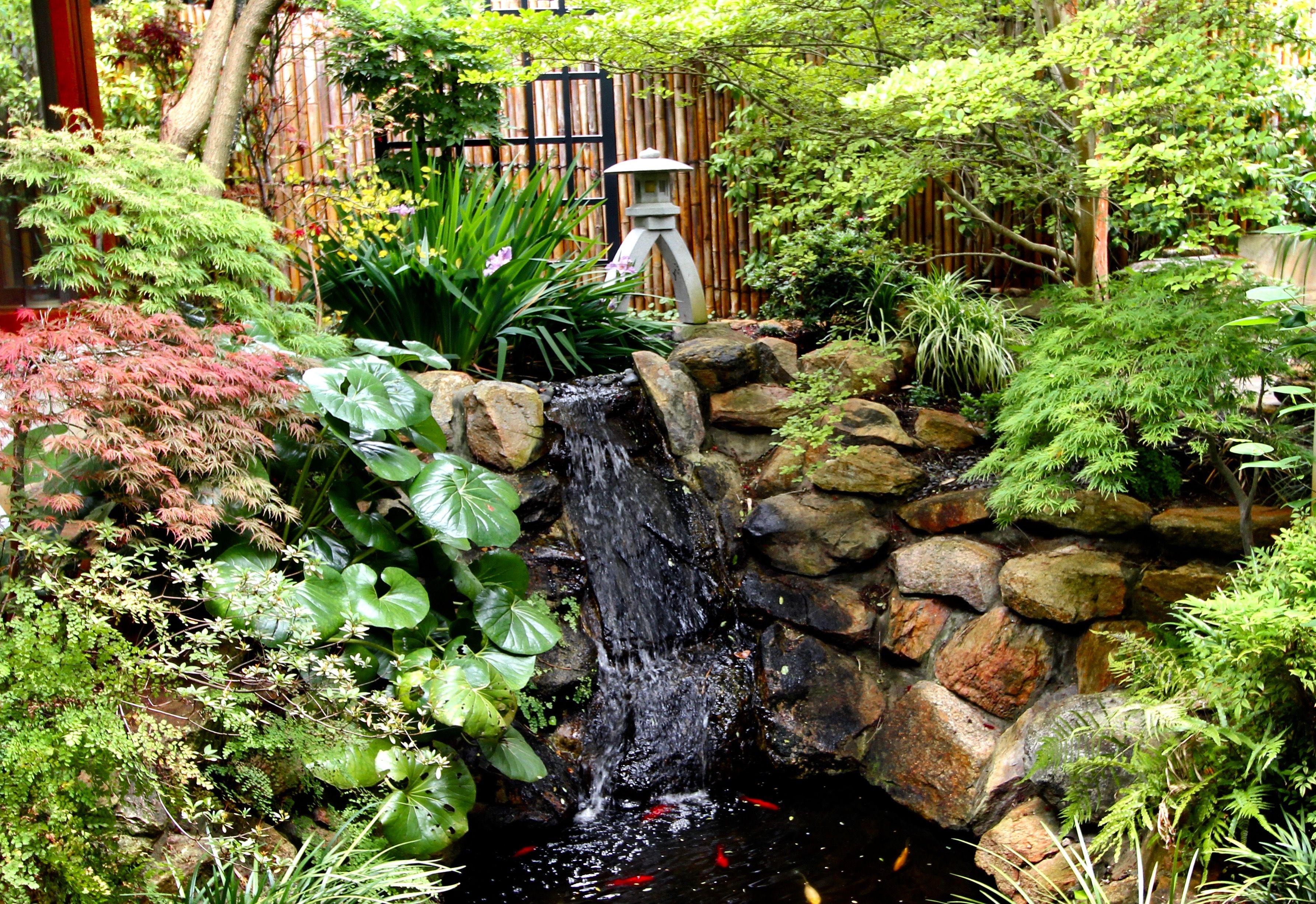 New Growth - Summer | Feng shui garden, New growth, Feng shui on Modern Feng Shui Garden  id=17203