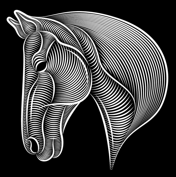 Line Art In Illustrator : Year of the horse by patrick seymour via behance horses