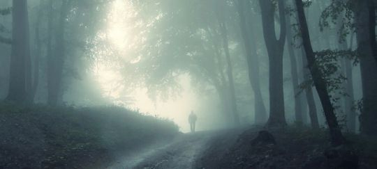 man in woods Reader Submission: The Vanishing Hunter