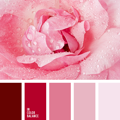 Pink monochrome color palette from Color Balance №3427. Lovely range of colour value for an effective quilt palette.