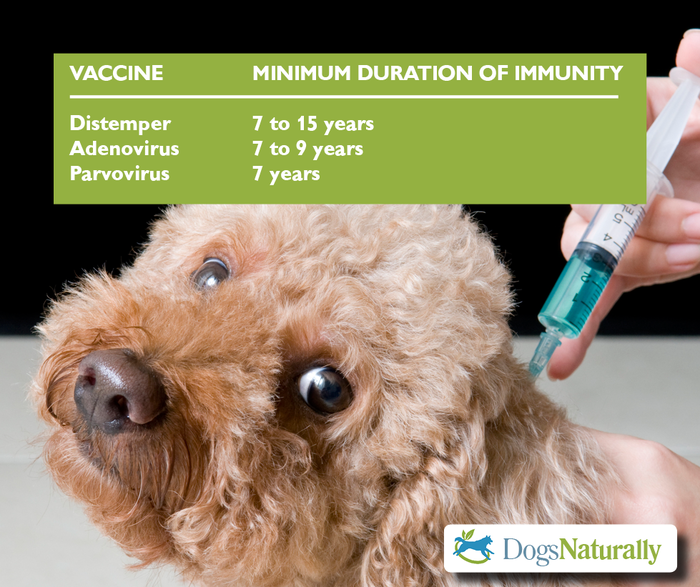 Don't over vaccinate your dogs. Vaccines give immunity for