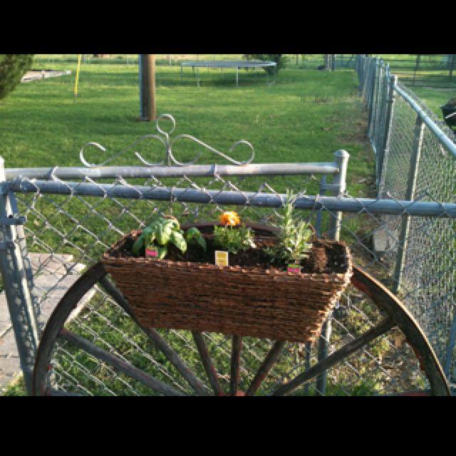 Sweet basil, Marigold, & Sage basket