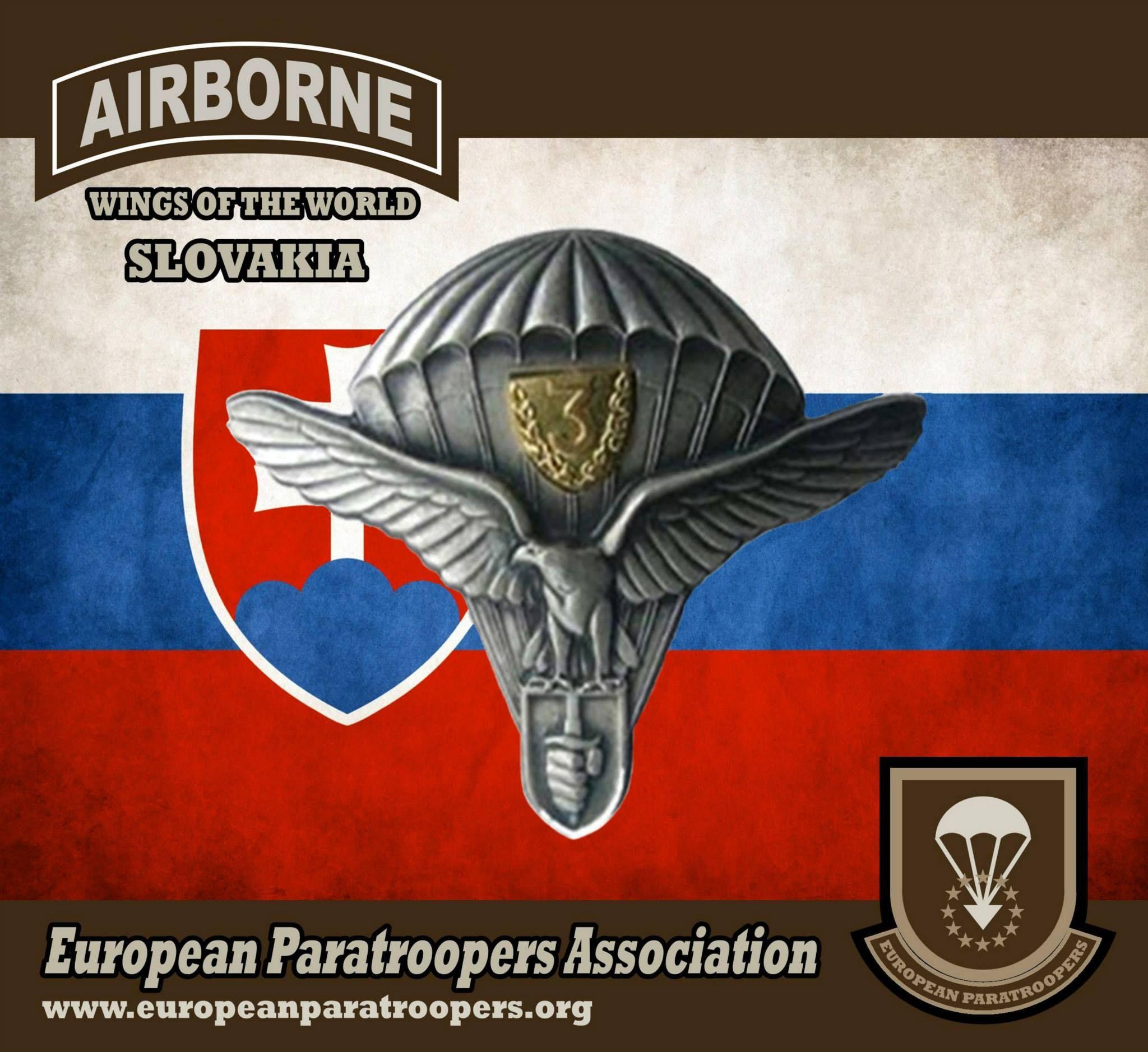 Slovak military parachutist badge slovak airborne wings slovak military parachutist badge slovak airborne wings biocorpaavc Choice Image