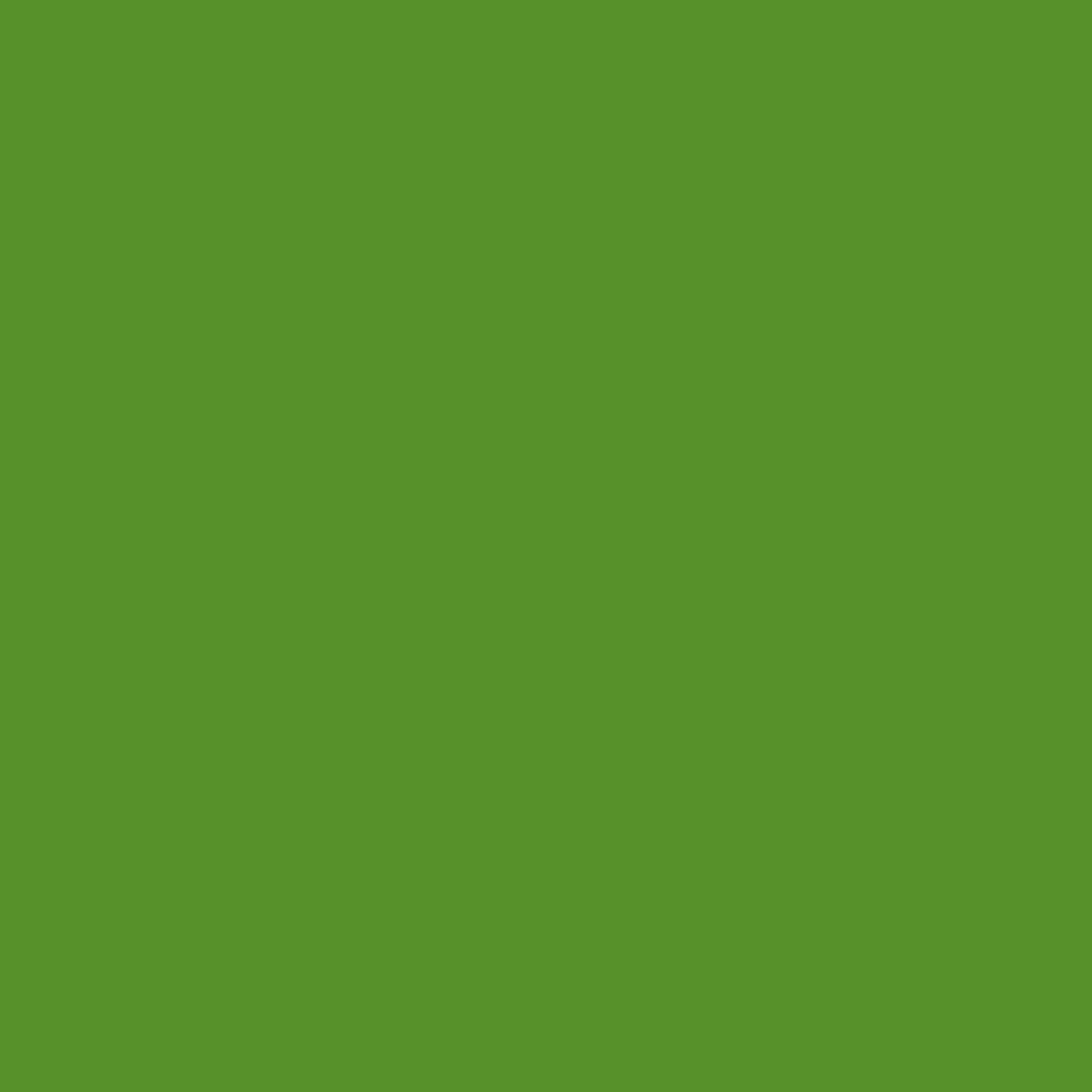 Basil Green - Single