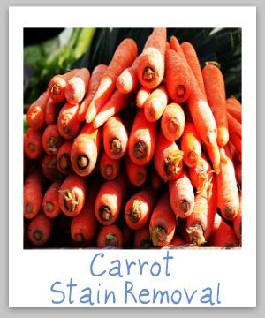 How To Remove Carrot Stains | Juice stain Carrots Stain ...