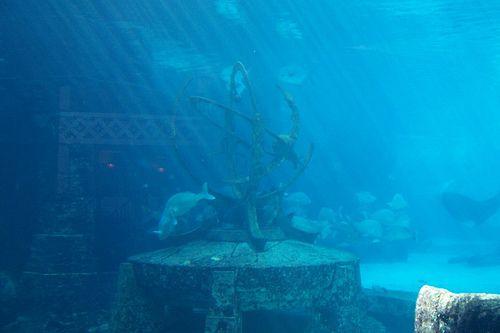 Atlantis Lost City Of Atlantis Lost City Underwater