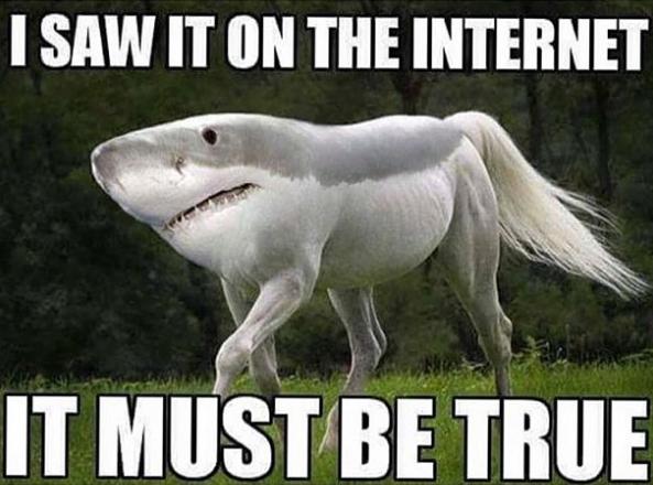 I saw it on the internet - meme - http://jokideo.com/i-saw-it-on ...