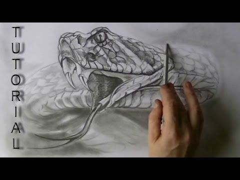 Pen Ink Drawing Tutorials How To Draw Realistic Scales On Fish Dragons Snakes Reptiles Youtube Snake Drawing Ink Pen Drawings Drawings