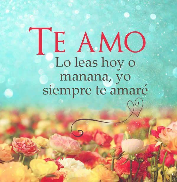 Te Amo Amor Mio Iuuu Pinterest Amor Te Amo Y Te Amo Mi Amor