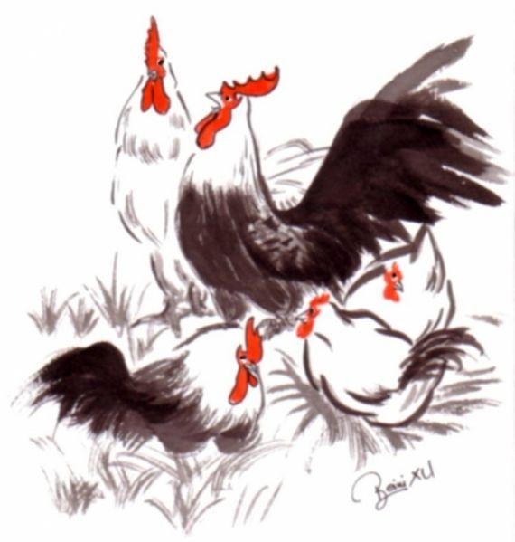 Dessin coq encre chinois animaux animaux encre de chine coq poule poussins animeaux - Coq a dessiner ...