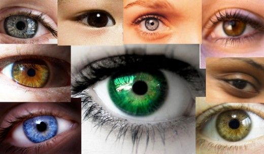 Rarest Eye Color In Humans Things For My Wall Pinterest Rarest