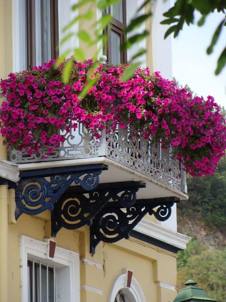 Balkon, Balkongestaltung, Pflanzen, Bunt, Blühten, Dankpflanzen - balkon ideen blumenkasten gelander