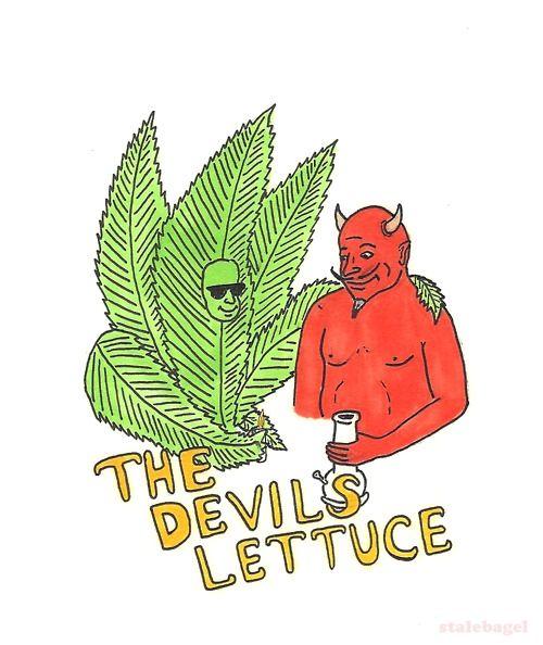 The Devil's Lettuce