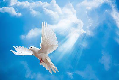 MI RINCON ESPIRITUAL: Y el Espíritu Santo....¿Quién es?