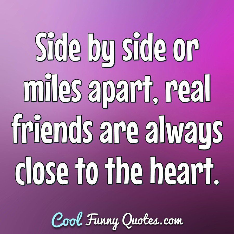 Funny Quote Real Friends Cute Funny Love Quotes Friends Quotes
