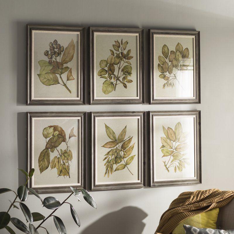 Seedlings 6 piece framed graphic art set