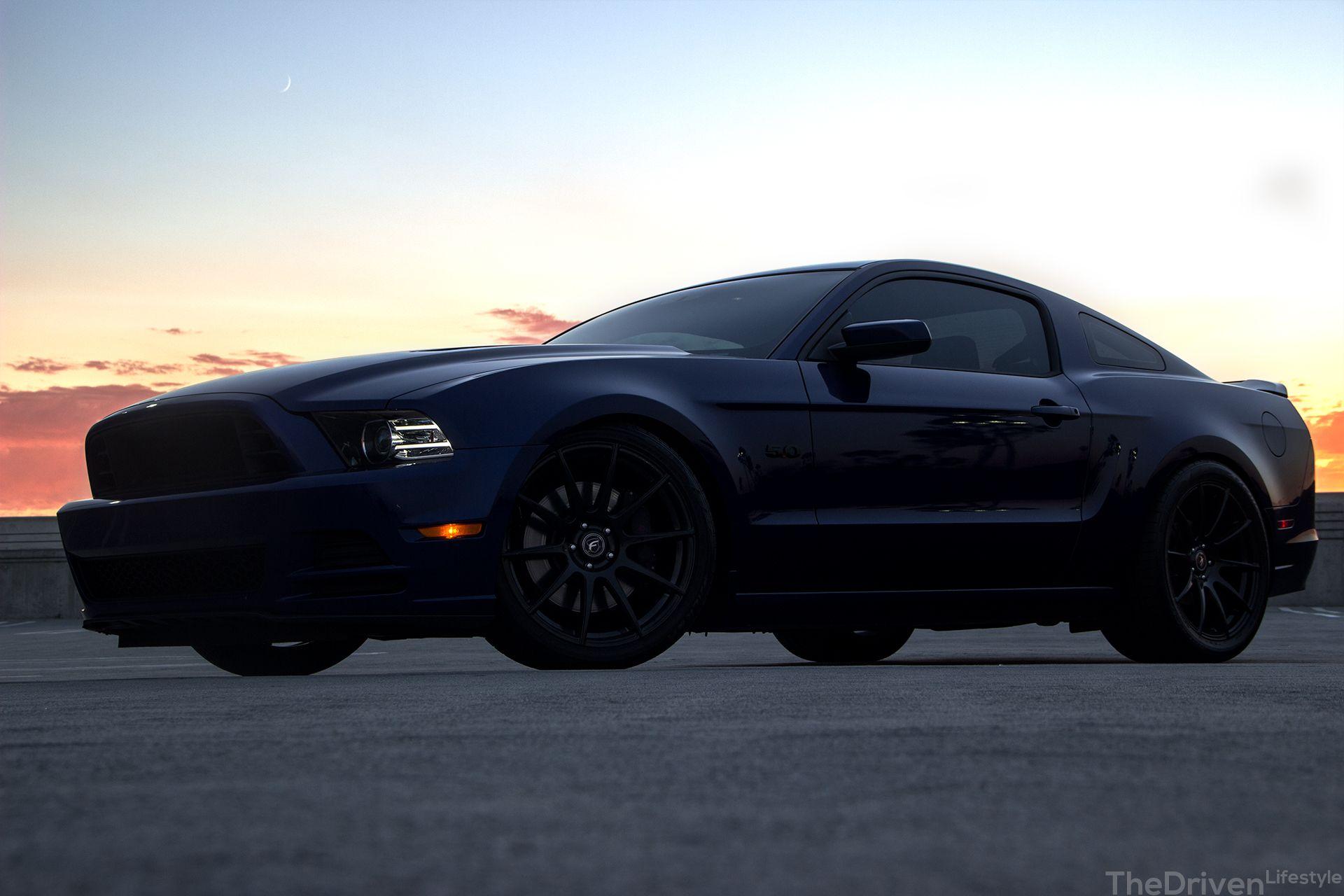 2013-14 Stang 5.0 2013 Mustang Gt, First Mustang, Bugatti, Mustangs,