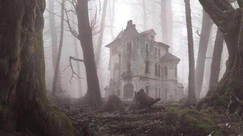 An abandoned house in the forest.
