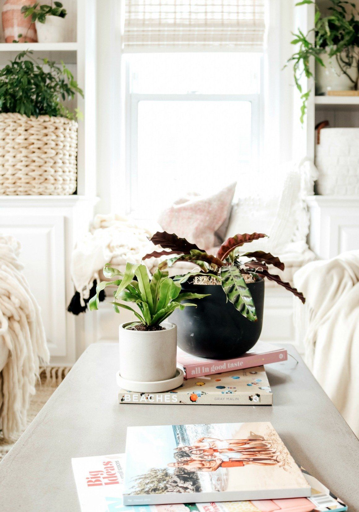 Spring home decor trends nesting with grace gorgeous plants throw pillows also furniture pinterest rh