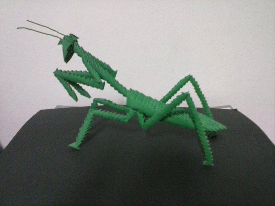 Praying mantis 3d origami pinterest praying mantis 3d origami and origami - Animaux origami 3d ...