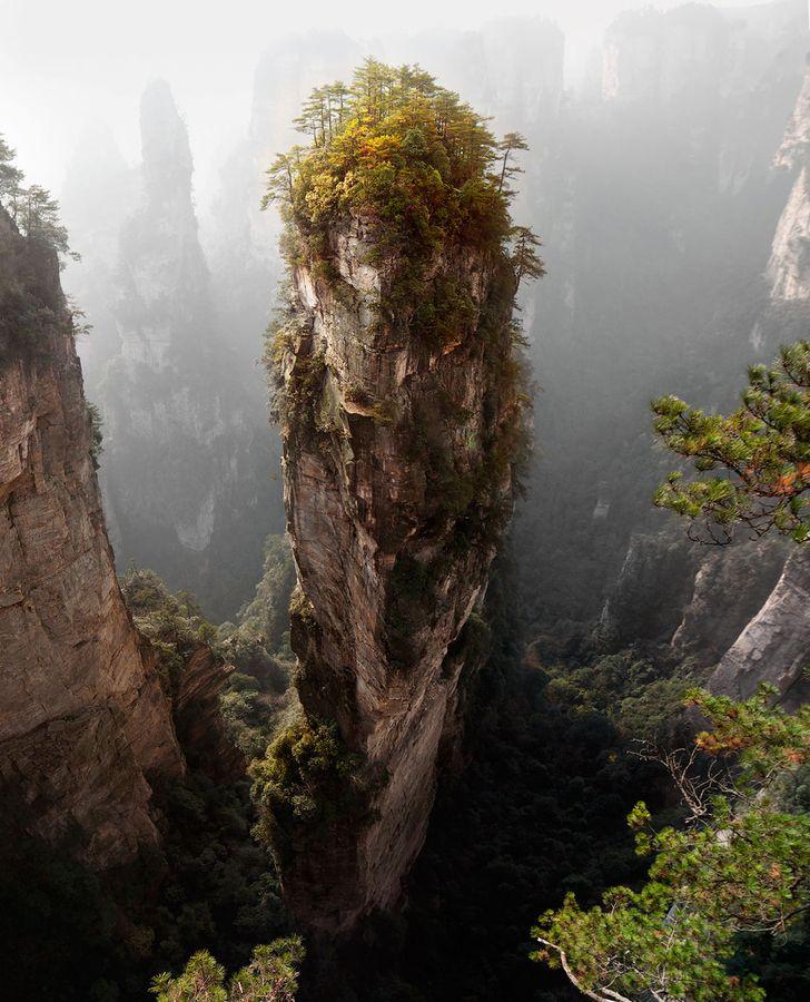 "Avatar Pandora Landscape: 500px / Photo ""Pandora"" By Yury Pustovoy"