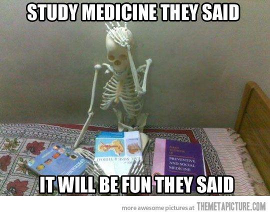 Studying Skeleton Medical Assistant Humor Medical Humor Medical