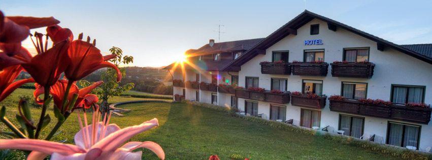 Das idyllische Hotel Bayerischer Wald mit Hallenbad, Sauna und großem Wellness-Bereich für Urlaub im Passauer Land.
